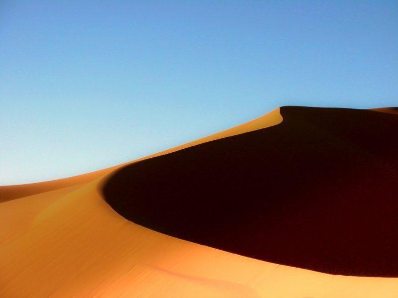 dana libye