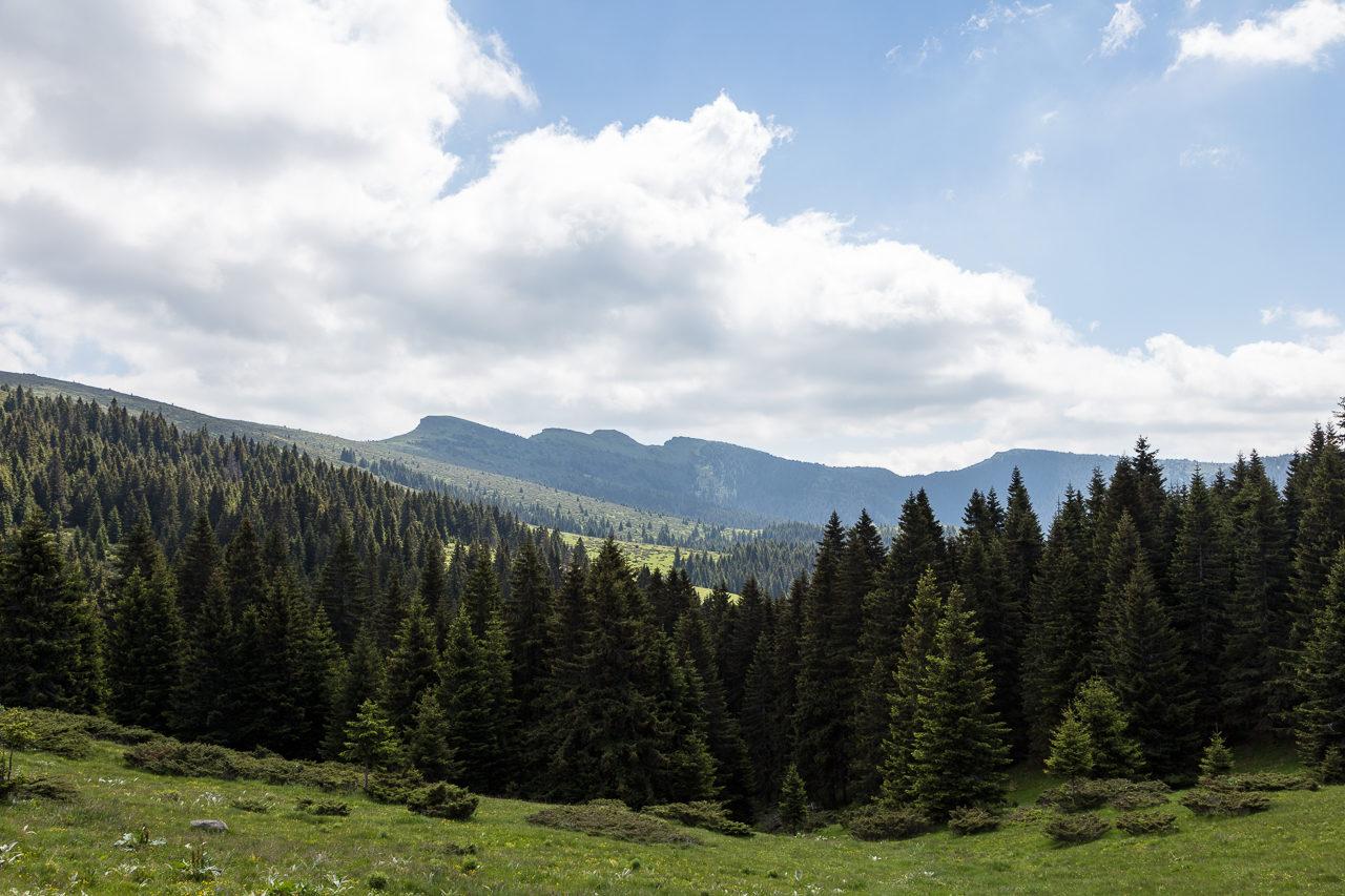 Stará planina