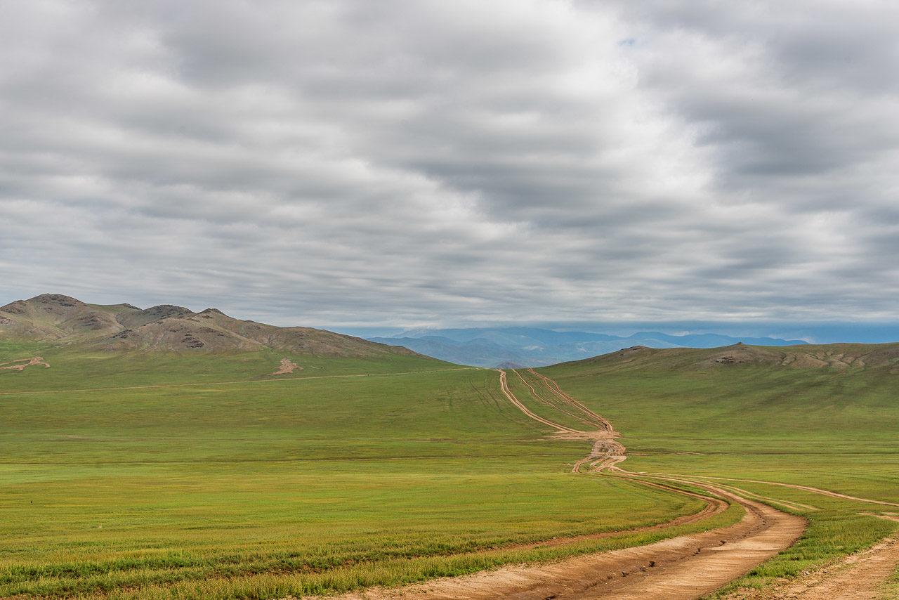 Mongolsko step Mongolia steppe
