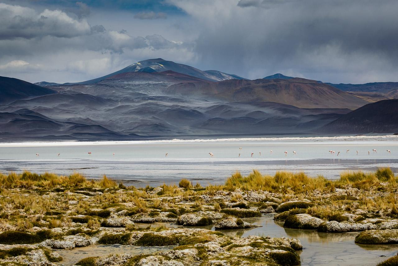 Salar Aguas Calientes, volcano Lastarria