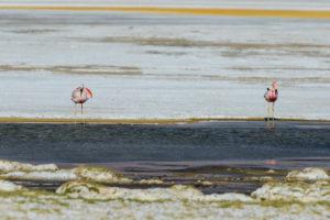 Laguna de la Azufrera